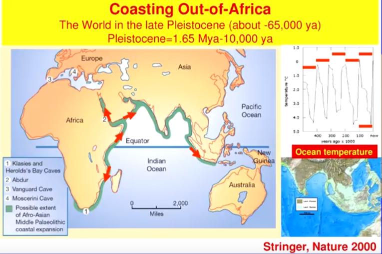 De migratie van de mens vanuit Afrika via de kustlijn