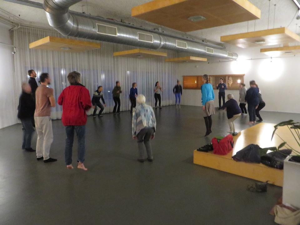 Beweegsessie onder leiding van Bram Vogels op de Ancestral Health Meetup van 15 december 2018 in Rijswijk