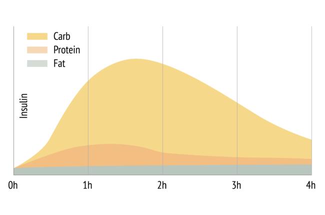 gemiddelde insuline respons op koolhydraten, eiwit en vet in het menselijk lichaam